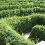 Spielen am Wege: Die Reichsstraße bekommt ein Labyrinth