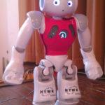 Kleine Roboter kicken sich zur WM nach Brasilien